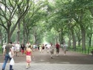 Don't these poor people know they are DOOMED here in crime-escalating Central Park?