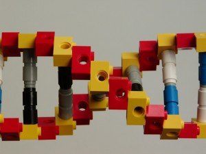 Yikes -- is this adult DNA? Get it away from the kids!!!!