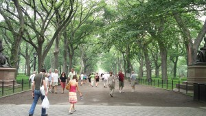 Central Park sure looks scary!