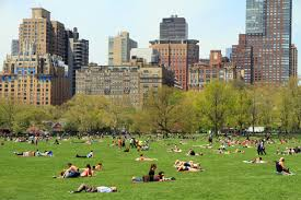 """I'll be at 85th and Fifth for """"Take Our Children to the Park"""" day this Saturdat at 10 a.m., with Peter Gray!"""