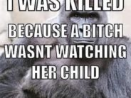 Turning an unpredictable tragedy into a mom-shaming meme.