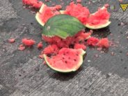 Smash enough watermelons and biking starts to look like bungee jumping into cement.
