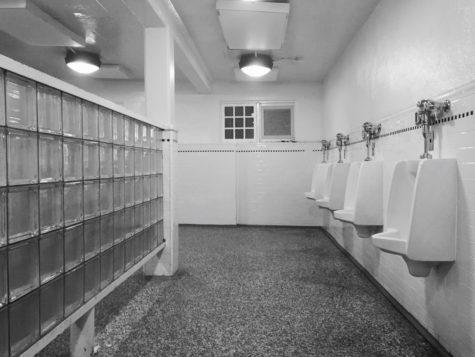 Ebony Bbw Public Bathroom