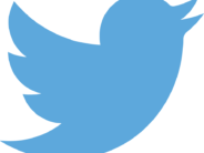 A little birdie called up Child Protective Services after a mom made a goofy tweet.