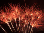 fireworks dandelions
