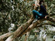 unsplash girl in tree by anniesplatt