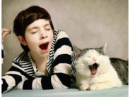 adobe kid and cat ywaning v 2