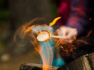 unsplash toasting marshmallow