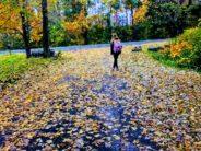 unsplash girl on leaf strewn path