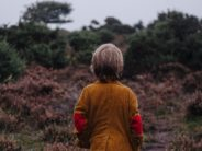 unsplash boy from behind looking pensively at woods annie-spratt-nPVTD3Bkso8-unsplash
